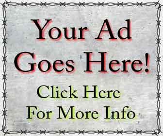 300 x 250 advertisement Banner